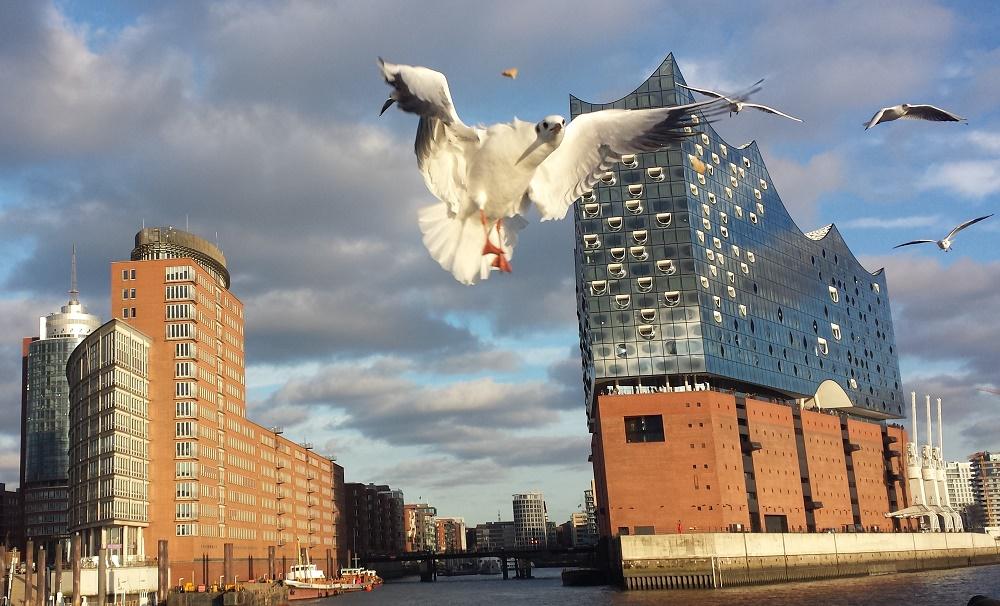 Fahrradverleih mit Lieferung und Stadtführungen in Hamburg