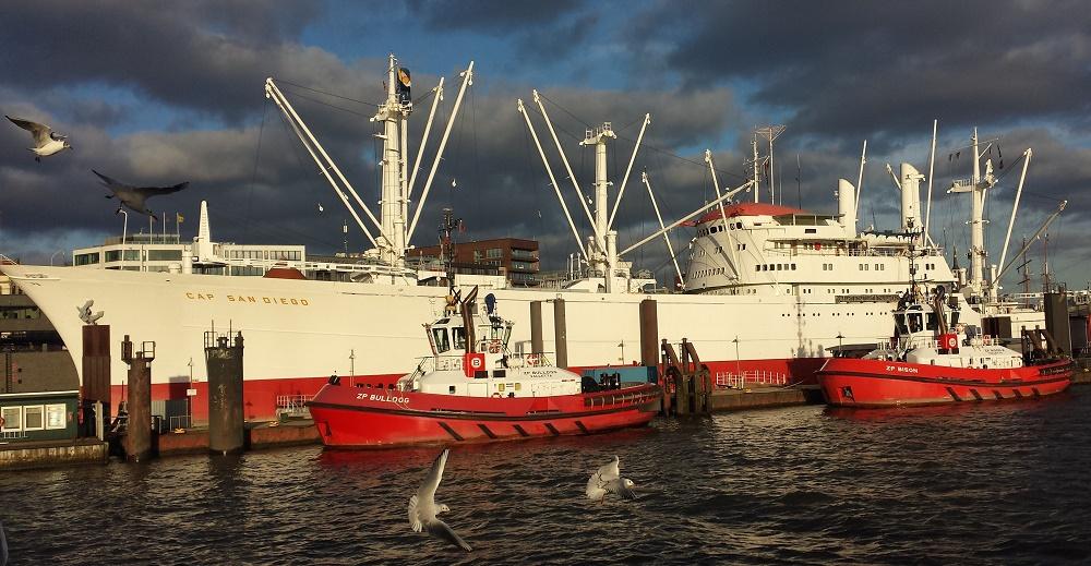 Schiffswrack in Hambung